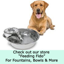 big max dog fountain